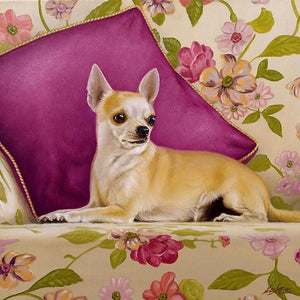 Chihuahua in a Couch - DIY Diamond Painting