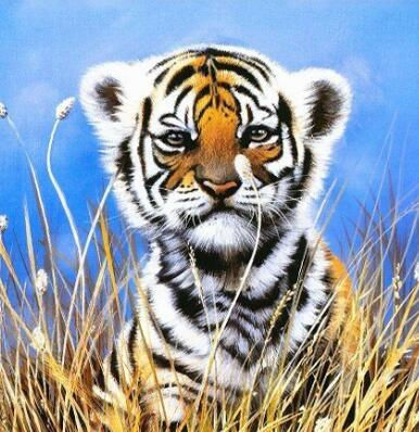 Image of Wild Baby Tiger - DIY Diamond Painting