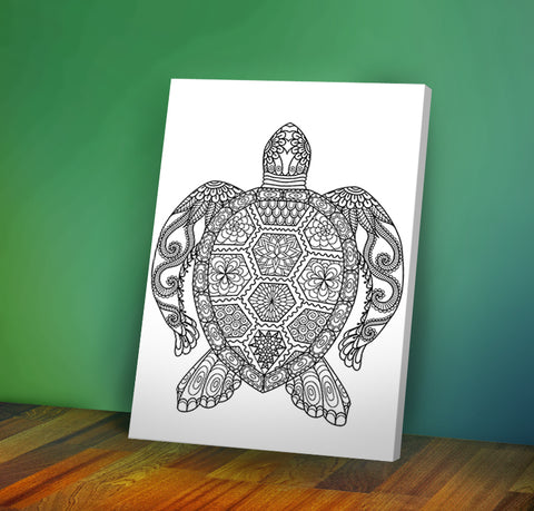 Turtle - Coloring Canvas