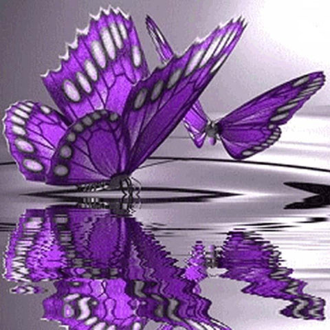 Image of Purple Butterfly - DIY Diamond  Painting