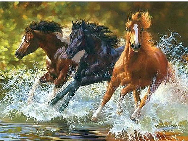 Horses Running in the Water -  DIY  Painting By Numbers