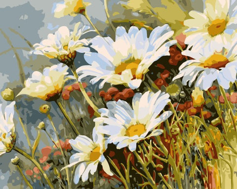 Image of White Chrysanthemum Flowers  - DIY Digital Painting By Numbers