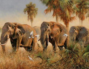 Elephants in the Nature - DIY Painting By Numbers