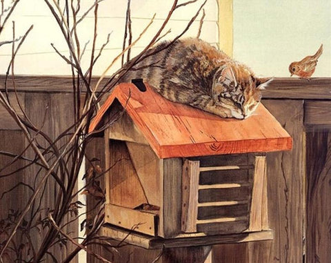 Image of Cat lying on a Mailbox - DIY Painting By Numbers
