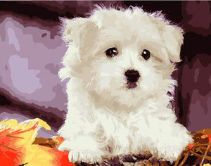 White Dog - DIY Painting By Numbers