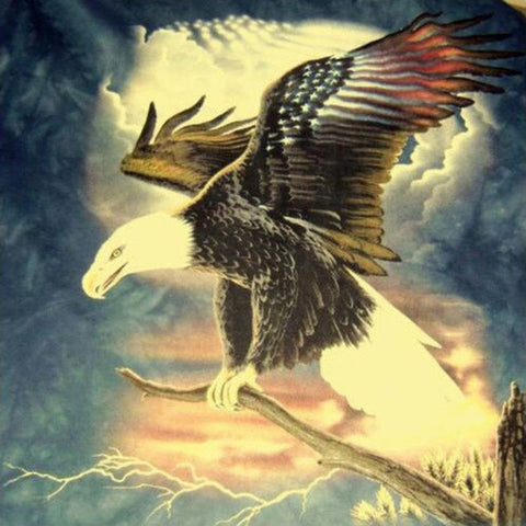 Image of Striking Eagle - DIY Diamond Painting