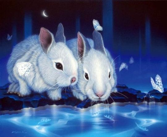 Rabbits - DIY Diamond Painting