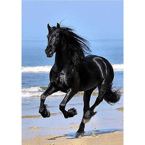 Image of Black Horse in the Seashore - DIY Diamond Painting