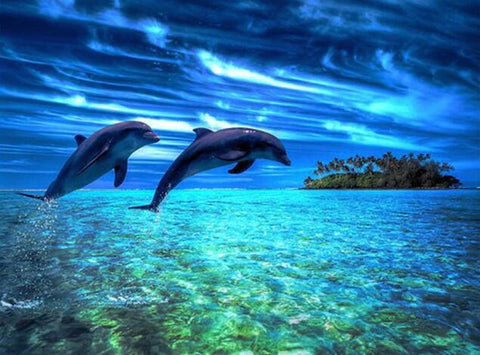 Image of Dolphins in an Island - DIY Diamond Painting