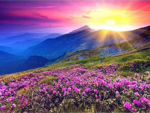 Image of Sunrise in a Flower Hill - DIY Diamond Painting