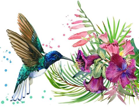 Image of Humming Bird and an Orchid - DIY Diamond Painting
