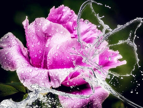 Image of Water Splashed in Rose - DIY Diamond Painting