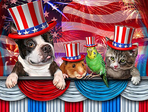 Image of american pets