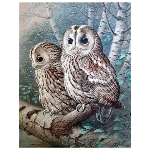 Two Snow Owl - DIY Diamond Painting