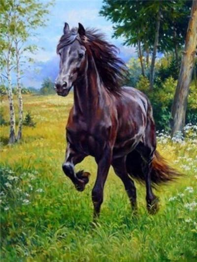 Horse Roaming in the Forest - DIY Diamond Painting