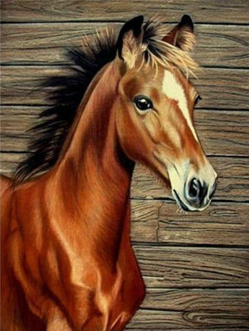 Image of Young Brown Horse - DIY Diamond Painting