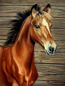 Young Brown Horse - DIY Diamond Painting
