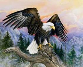 Image of Soaring Eagle - DIY Diamond Painting
