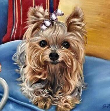 Image of Lovely Yorkshire Terrier - DIY Diamond  Painting