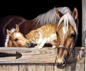 Image of Horse and Cat in a Barn - DIY Diamond Painting