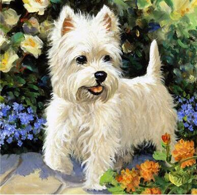 Image of Little White Puppy - DIY Diamond  Painting