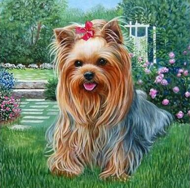 Girl Terrier - DIY Diamond  Painting