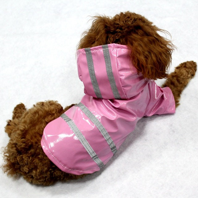 Raincoat Glisten For Puppy