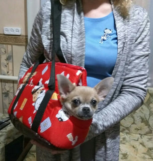 Puppy Soft Carrier