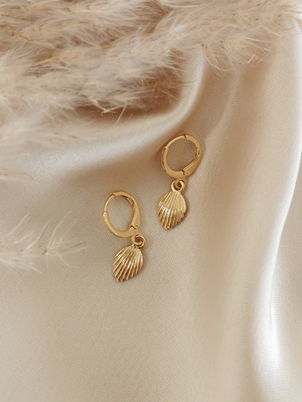 Mini Shell - 14k Gold Plated Huggie earrings