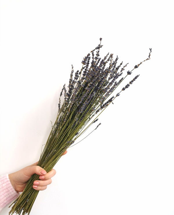 Natural Blue Lavender Dried Flower Bunch