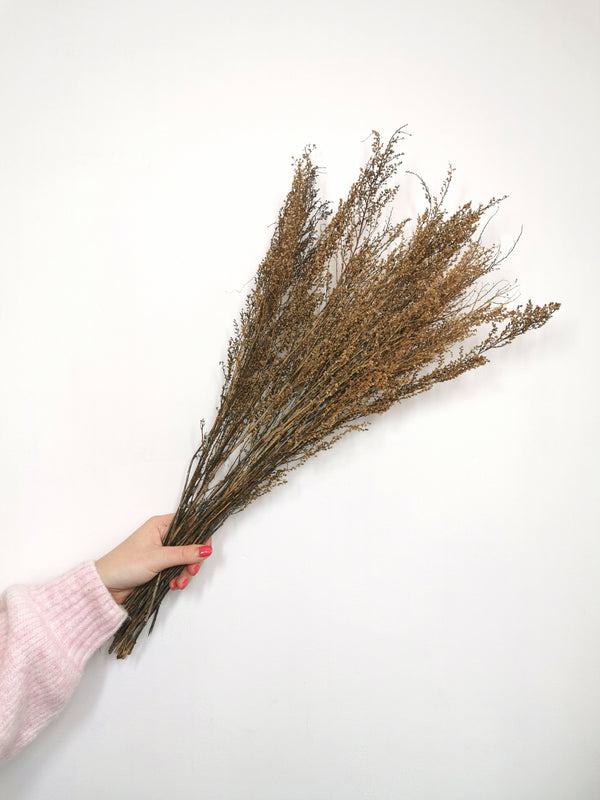 Solidago Natural Dried Flower Bunch