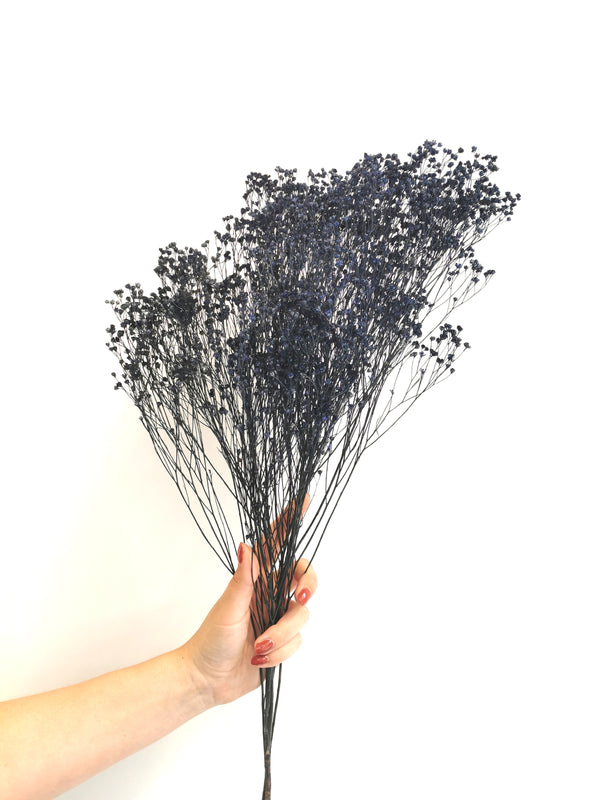 Navy Blue dried bloom broom Flower Bunch