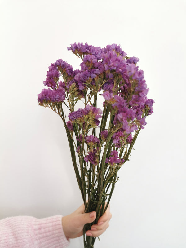 Purple Statice Dried Flower Bunch