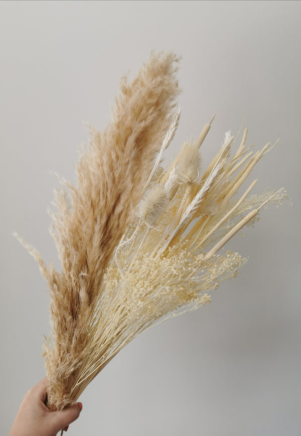 The 'Caramel Pampas' - Ivory and Natural Dried Flower Arrangement