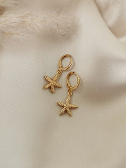 Starfish - 14k Gold Plated Huggie earrings