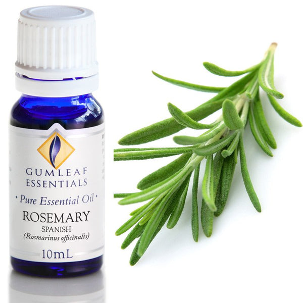 Essential Oil Rosemary Spanish