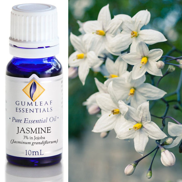 Essential Oil Jasmine 3% in Jojoba Oil