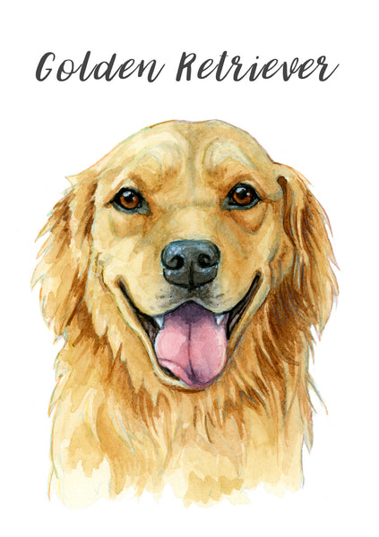 Golden Retriever - Priscilla George Fine Art