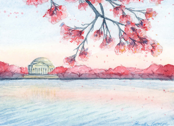 Cherry Blossoms DC - Priscilla George Fine Art