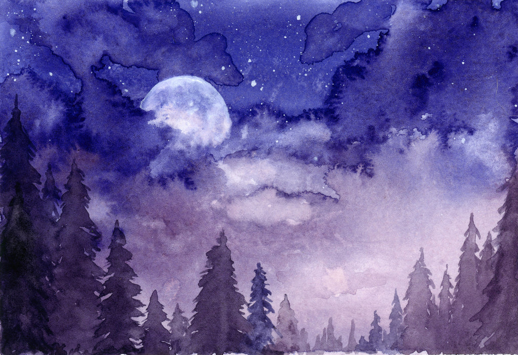 Nightfall - Priscilla George Fine Art