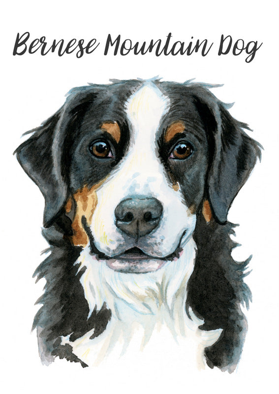 Bernese Mountain Dog - Priscilla George Fine Art