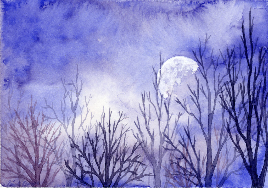 Super Moon - Priscilla George Fine Art