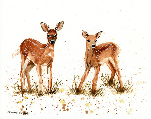 Deer - Priscilla George Fine Art