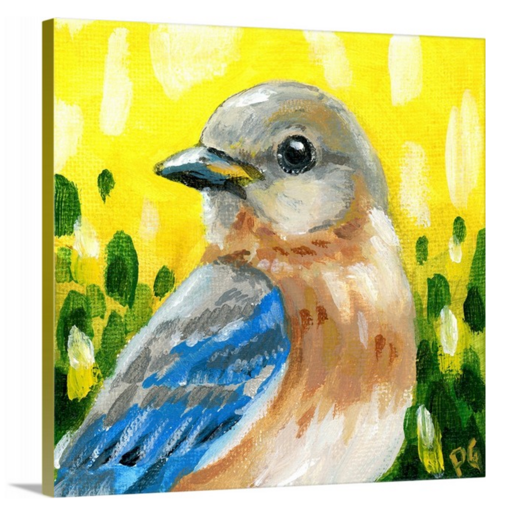 Eastern Bluebird Female Wrapped Canvas Print - Priscilla George Fine Art