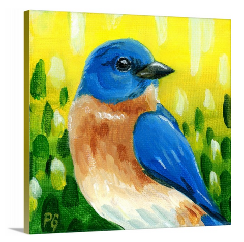 Eastern Bluebird Male Wrapped Canvas Print - Priscilla George Fine Art