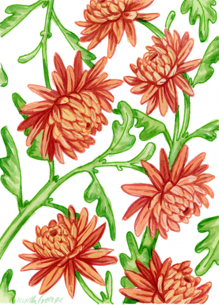 Chrysanthemum - Priscilla George Fine Art