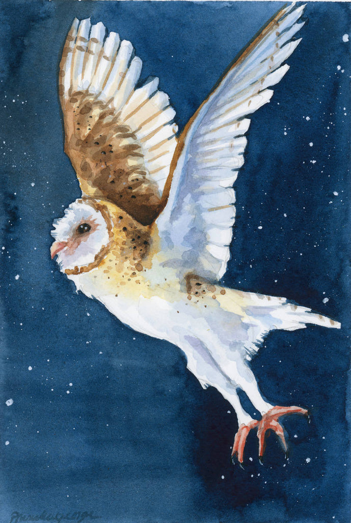 Flying Barn Owl - Priscilla George Fine Art