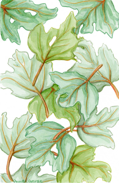 Green Leaves - Priscilla George Fine Art