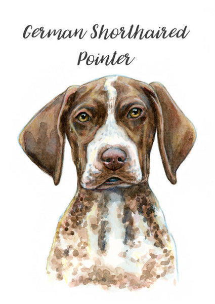 German Shorthaired Pointer - Priscilla George Fine Art