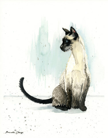 Siamese Cat - Priscilla George Fine Art